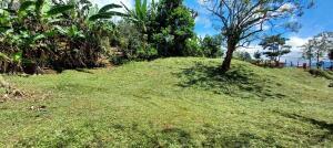 Terreno En Ventaen Puriscal, Mora, Costa Rica, CR RAH: 22-668