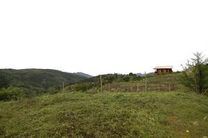 Terreno En Ventaen Tarrazu, Tarrazu, Costa Rica, CR RAH: 22-656