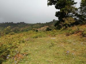Terreno En Ventaen El Jardin, Tarrazu, Costa Rica, CR RAH: 22-672