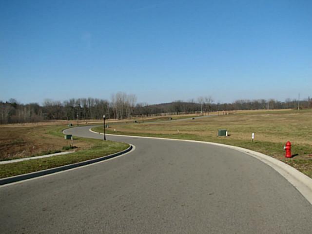 412 Buena Vista Drive, Johnstown, Ohio 43031, ,Land/farm,For Sale,Buena Vista,213003042