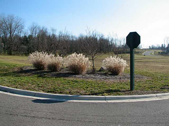 405 Buena Vista Drive, Johnstown, Ohio 43031, ,Land/farm,For Sale,Buena Vista,213003054
