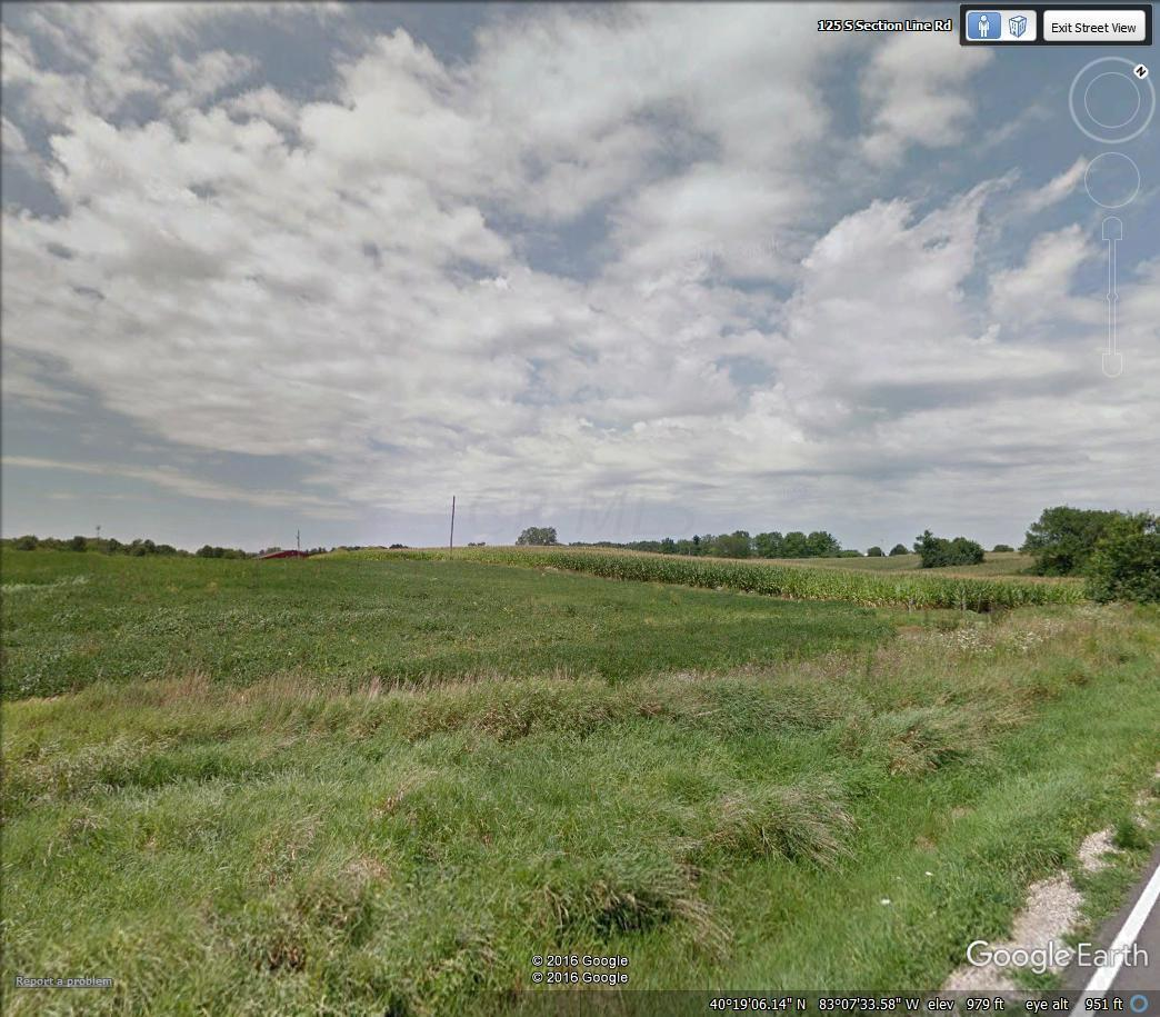 0 Section Line Road, Delaware, Ohio 43015, ,Land/farm,For Sale,Section Line,216042773