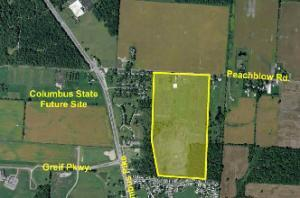 526 Peachblow Road, Lewis Center, OH 43035