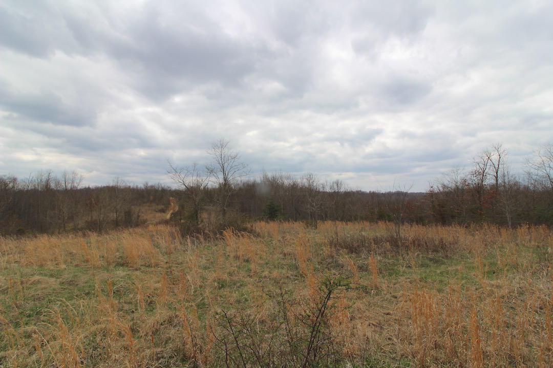 0 Co Rd 55, South Point, Ohio 45680, ,Land/farm,For Sale,Co Rd 55,218012171