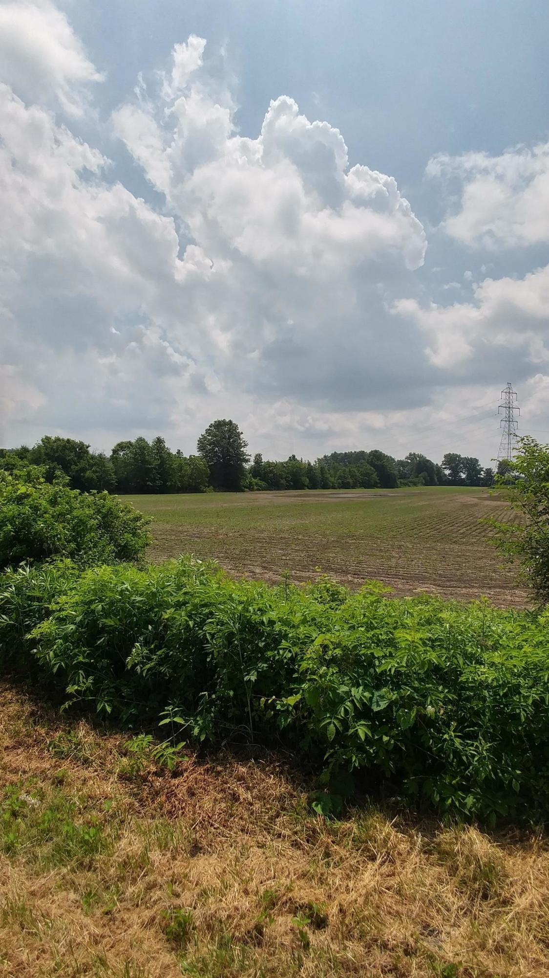 3873 Bean-Oller Road, Delaware, Ohio 43015, ,Land/farm,For Sale,Bean-Oller,218019905