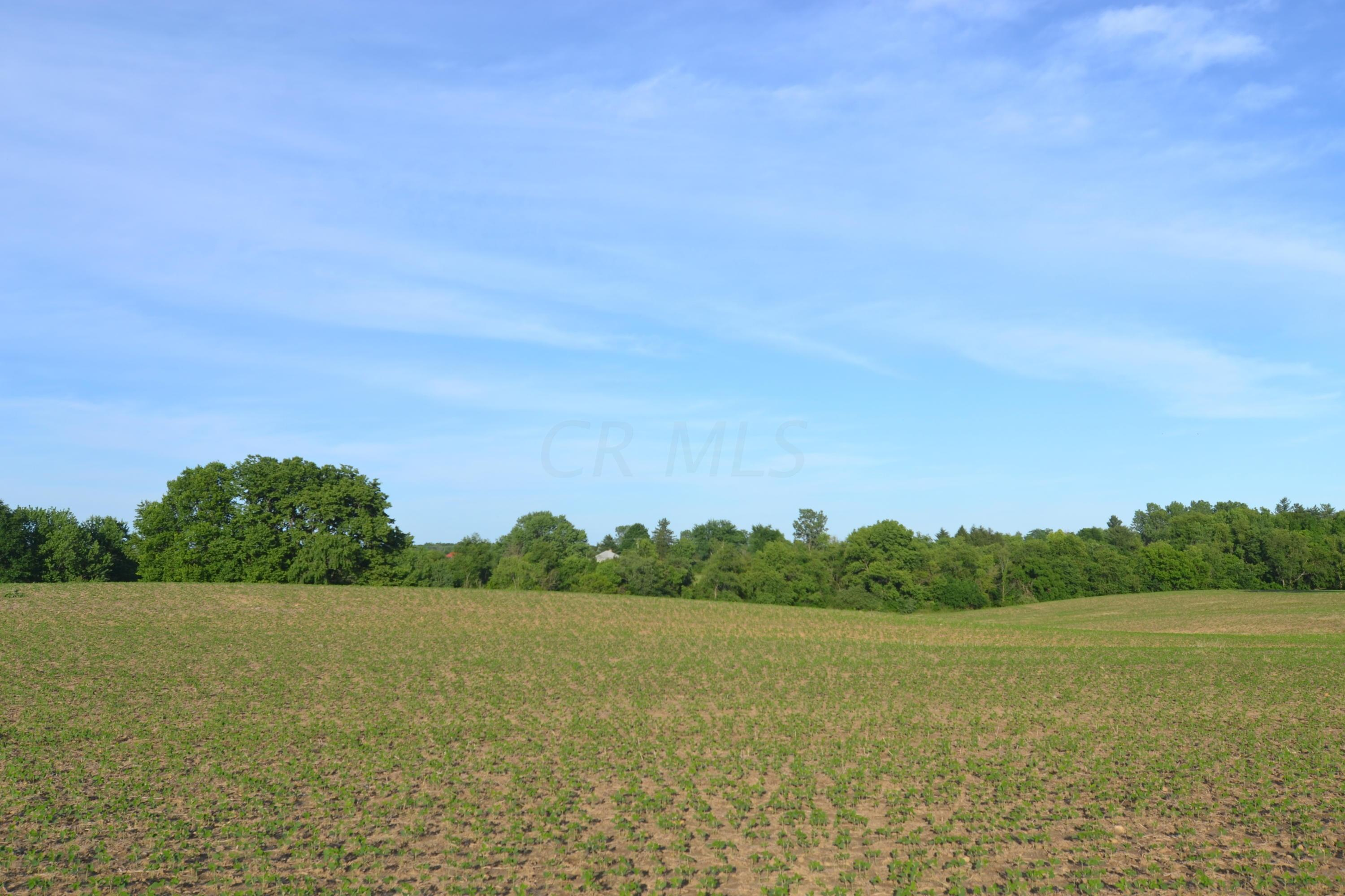 0 Caswell Road, Johnstown, Ohio 43031, ,Land/farm,For Sale,Caswell,218021568