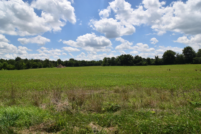 10025 Miller Road, Johnstown, Ohio 43031, ,Land/farm,For Sale,Miller,218022975