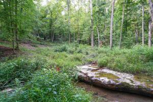Property for sale at Rockbridge,  OH 43149