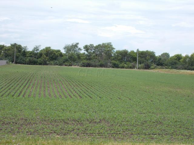 0 Stoneridge Drive, Circleville, Ohio 43113, ,Land/farm,For Sale,Stoneridge,218038945