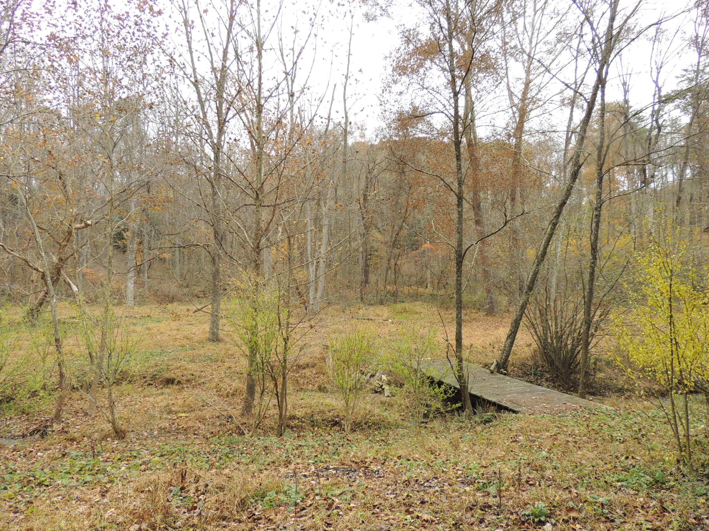 12790 Big Cola Road, Rockbridge, OH 43149 US Hocking Hills Land for