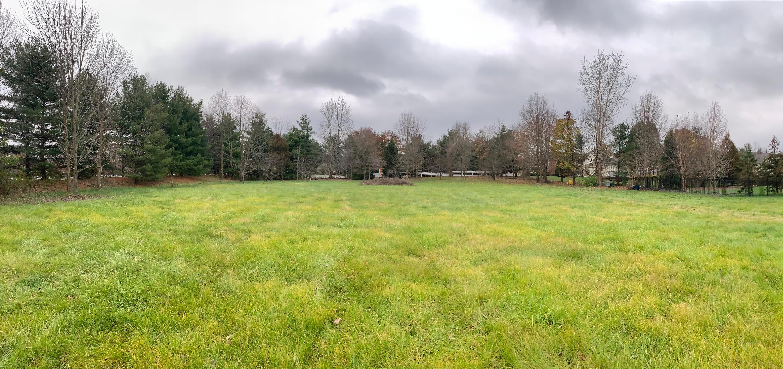 7867 Brandon Road, New Albany, Ohio 43054, ,Land/farm,For Sale,Brandon,218042715