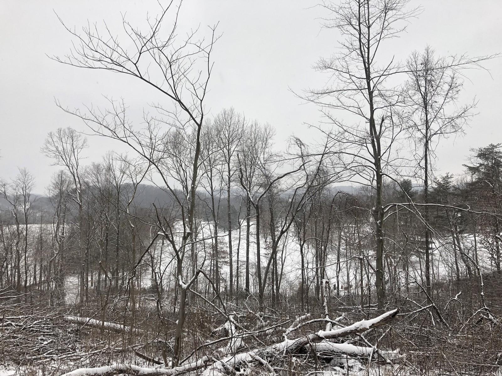 0 BIS Road, Lancaster, Ohio 43130, ,Land/farm,For Sale,BIS,219003521