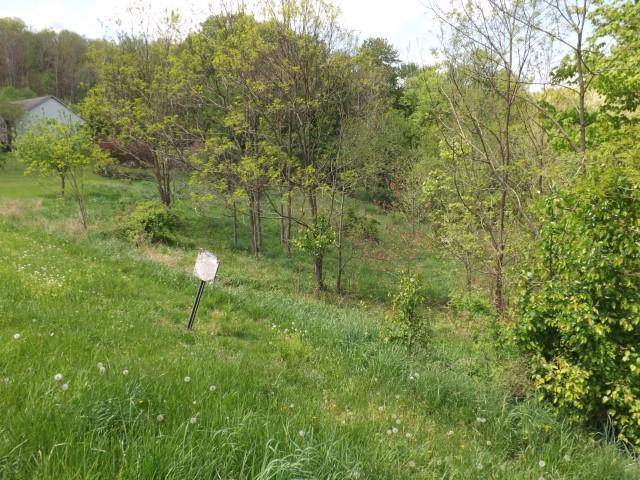 510 Edgehill Circle, Logan, Ohio 43138, ,Land/farm,For Sale,Edgehill,219007377