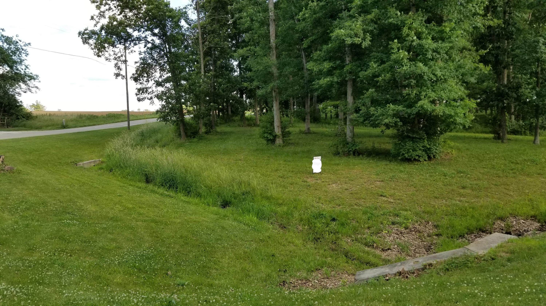 10125 Split Rock Court, Orient, Ohio 43146, ,Land/farm,For Sale,Split Rock,219019964