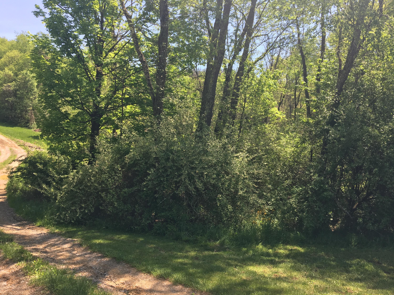 19842 Goat Run Honey Fork Road, Logan, Ohio 43138, ,Land/farm,For Sale,Goat Run Honey Fork,219009457