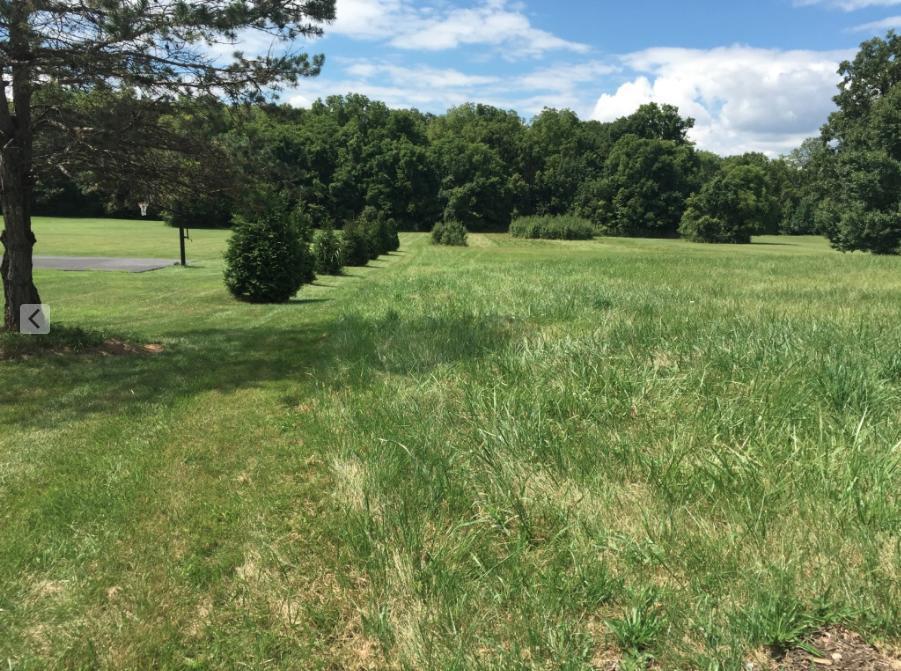 709 Parkedge Drive, Gahanna, Ohio 43230, ,Land/farm,For Sale,Parkedge,219023688