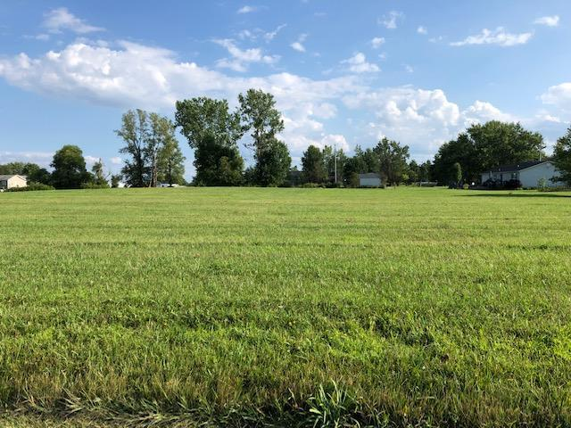 7326 State Route 19, Mount Gilead, Ohio 43338, ,Land/farm,For Sale,State Route 19,219029359
