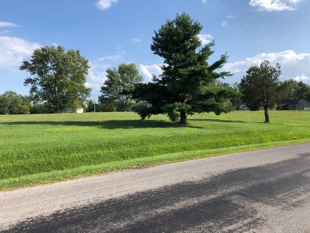 7326 State Route 19, Mount Gilead, Ohio 43338, ,Land/farm,For Sale,State Route 19,219029794