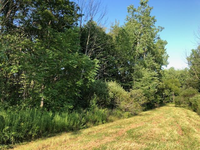 7326 State Route 19, Mount Gilead, Ohio 43338, ,Land/farm,For Sale,State Route 19,219029901