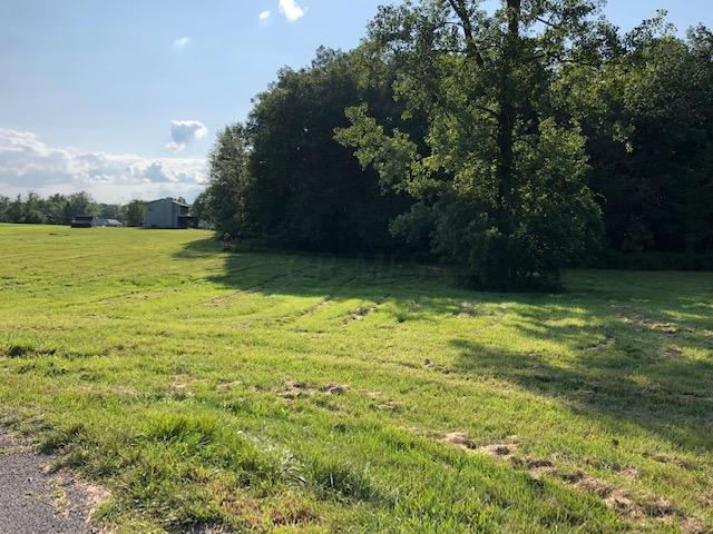 7326 State Route 19, Mount Gilead, Ohio 43338, ,Land/farm,For Sale,State Route 19,219030218
