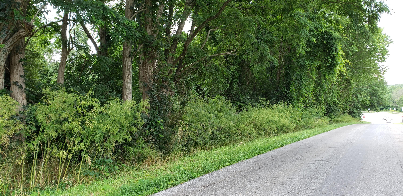 0 Straub Road, Mansfield, Ohio 44907, ,Land/farm,For Sale,Straub,219031983