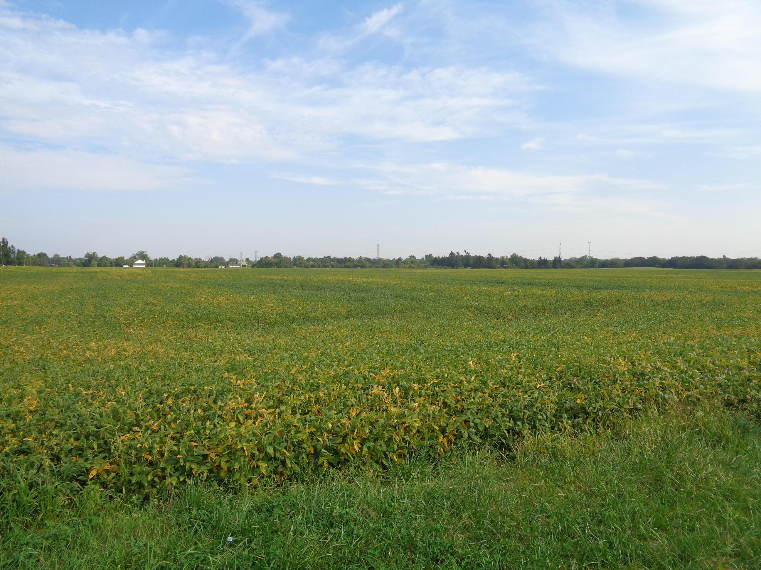 0 Oharra Road, Galloway, Ohio 43119, ,Land/farm,For Sale,Oharra,219034758