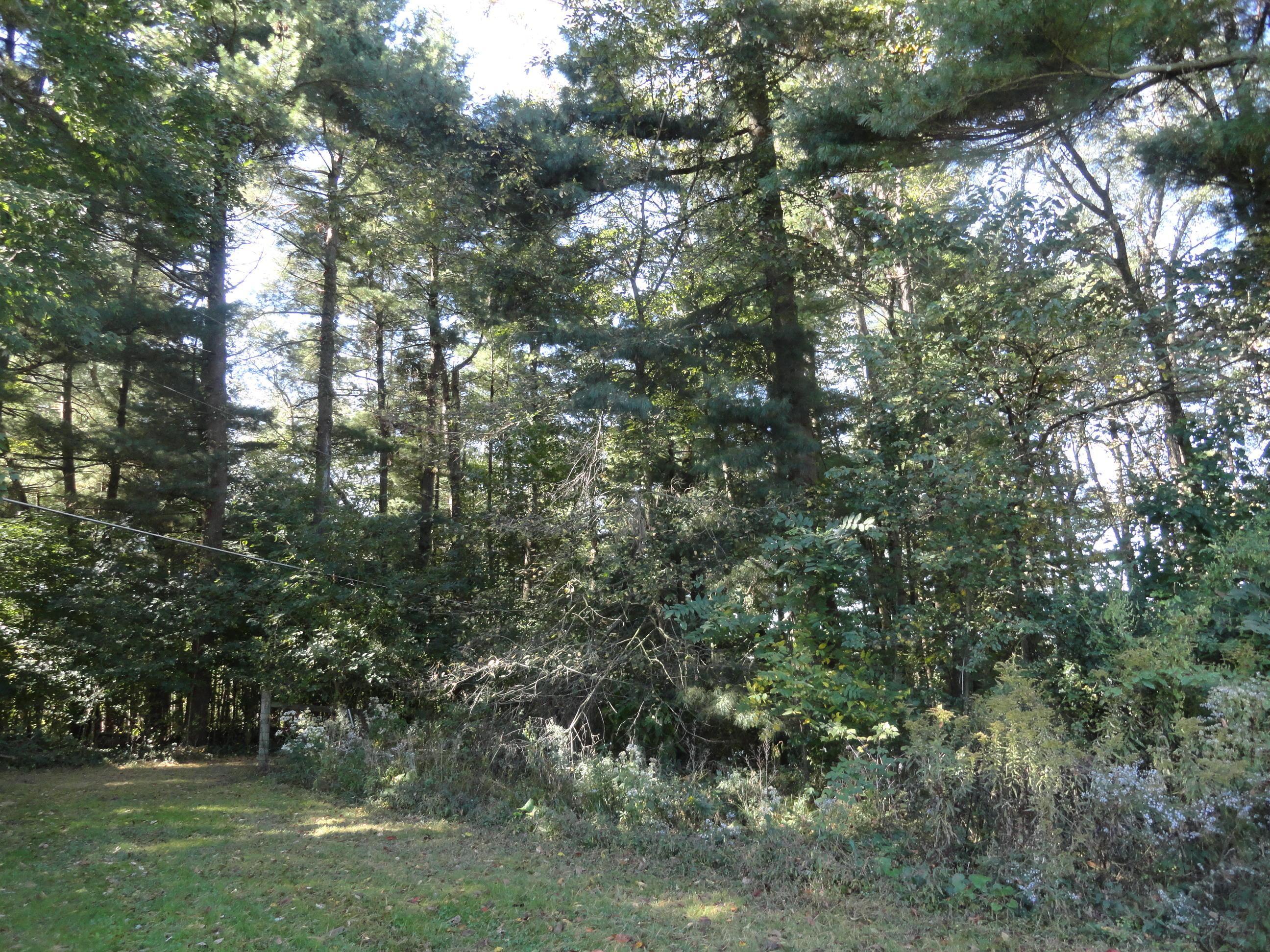 0 Coshocton Road, Howard, Ohio 43028, ,Land/farm,For Sale,Coshocton,219036335