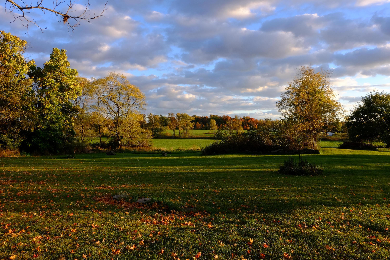 Fall at Kame Farm