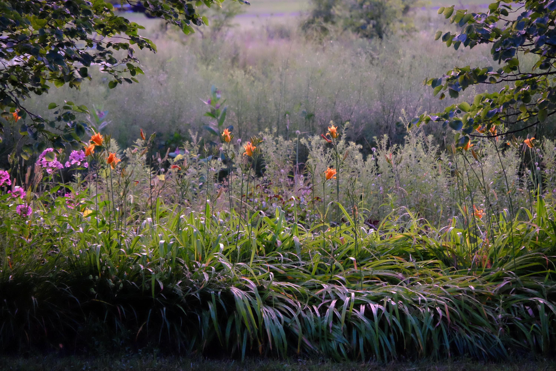 Kame Farm Flowers