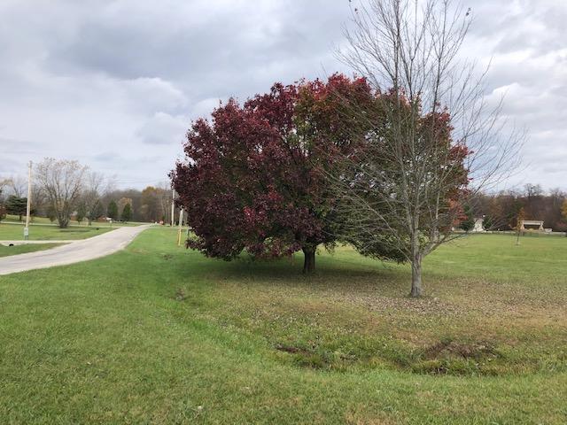 7326 State Route 19, Mount Gilead, Ohio 43338, ,Land/farm,For Sale,State Route 19,219041600