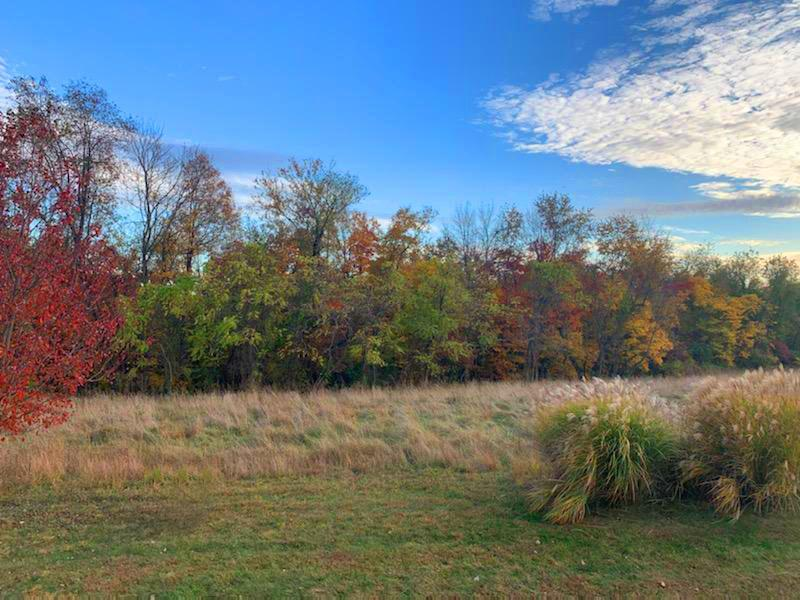 125 Orchard Wood Path, Granville, Ohio 43023, ,Land/farm,For Sale,Orchard Wood,219040248