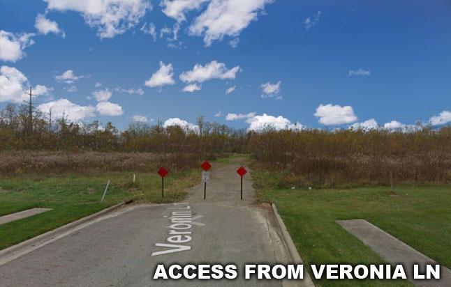 9.-Veronia
