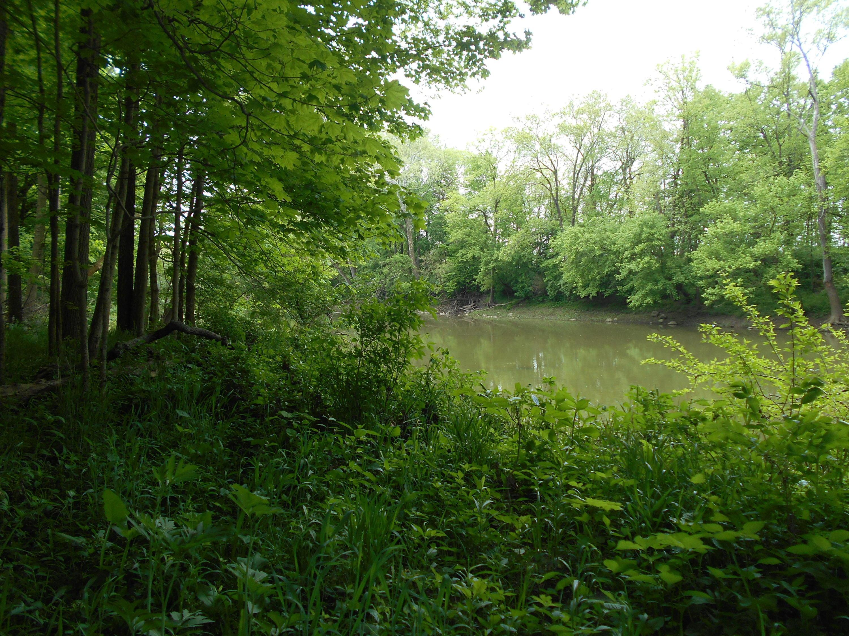 0 River Road, Ostrander, Ohio 43061, ,Land/farm,For Sale,River,219044990