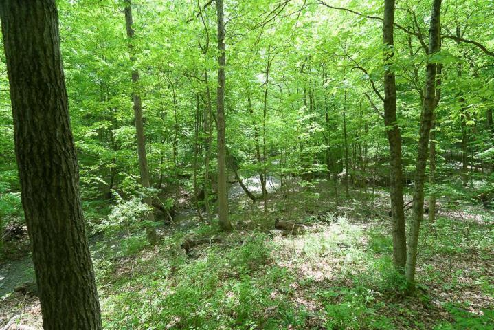 4462 Summit Ridge Drive, Upper Arlington, Ohio 43220, ,Land/farm,For Sale,Summit Ridge,220002952