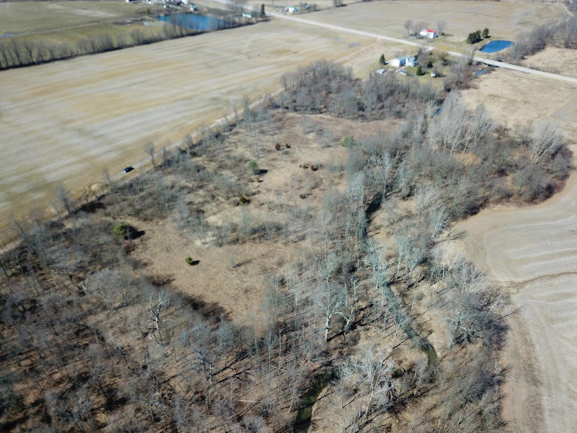 0 State Route 521, Sunbury, Ohio 43074, ,Land/farm,For Sale,State Route 521,220007669