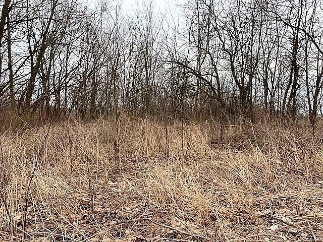 0 Johnstown Road, Centerburg, Ohio 43011, ,Land/farm,For Sale,Johnstown,220008700