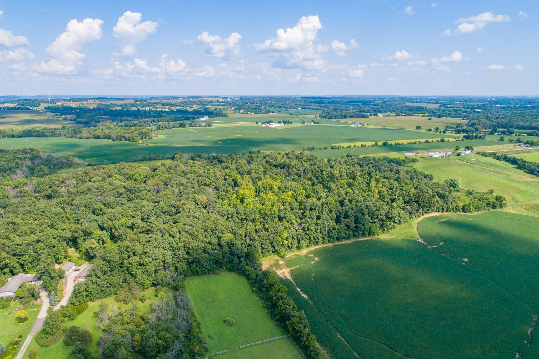 Woods & Farm Land