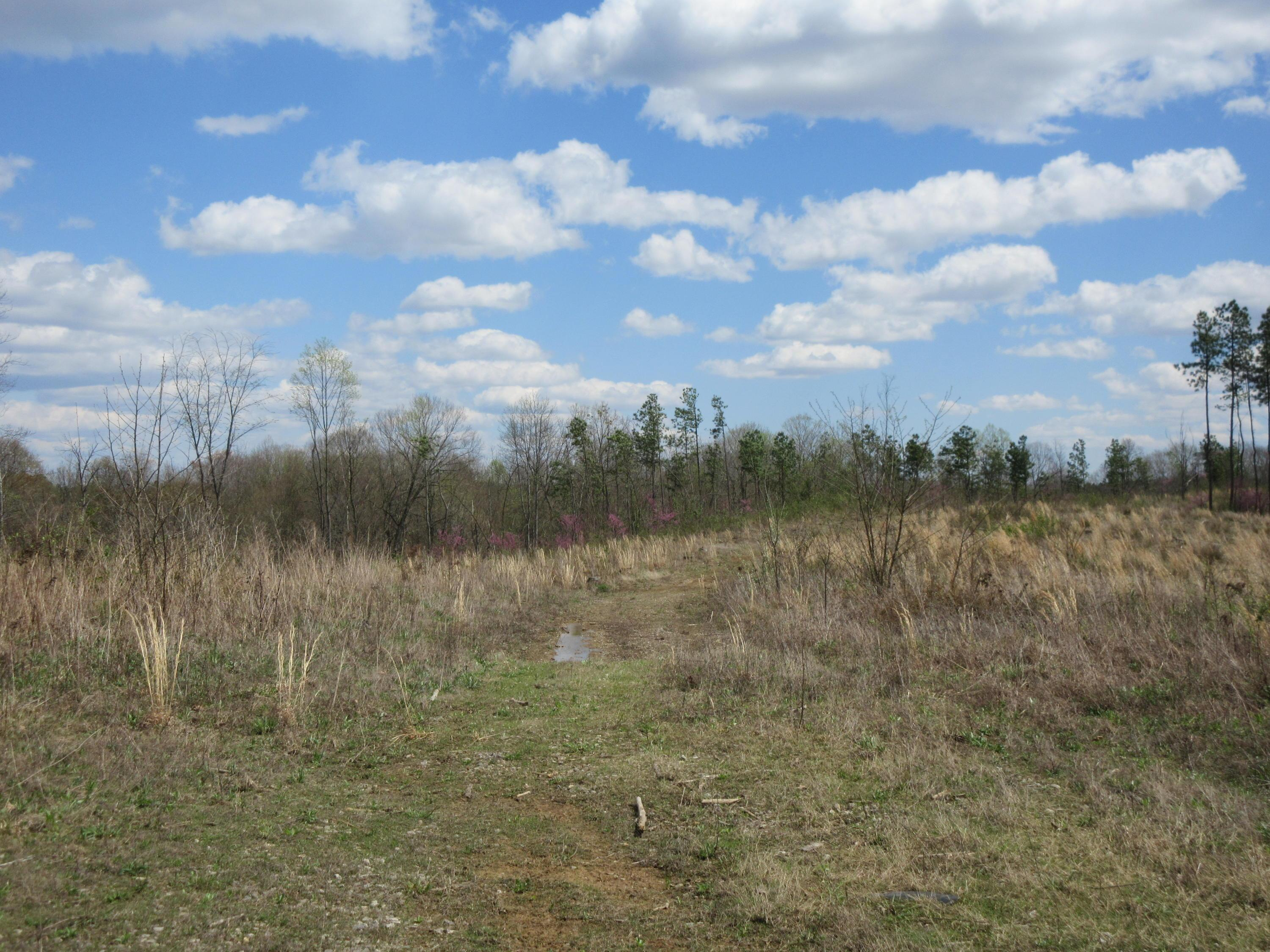 0 Summit Rd. 730 Tract A, Bidwell, Ohio 45614, ,Land/farm,For Sale,Summit Rd. 730 Tract A,220013525