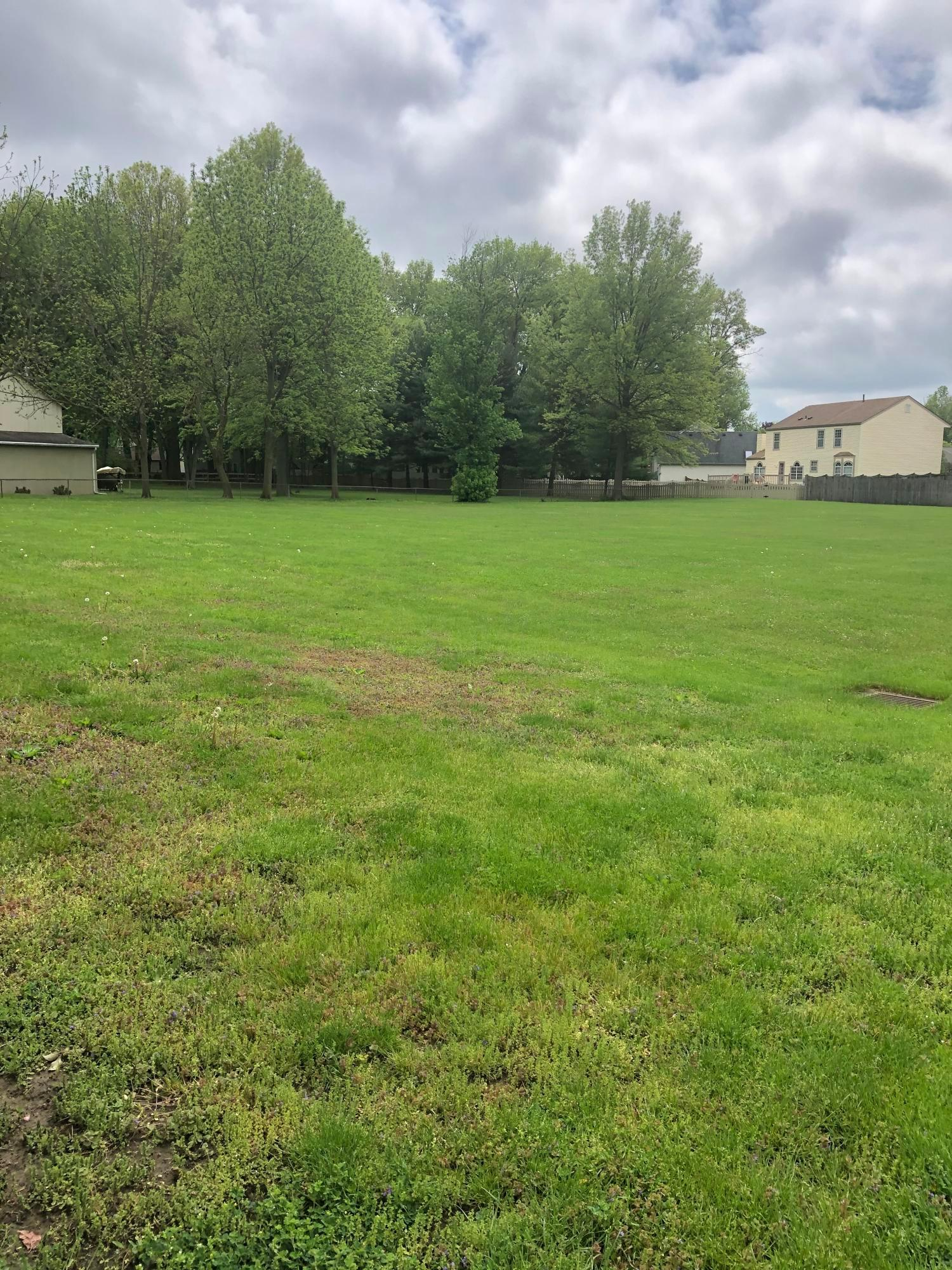 0 County Line Road, Westerville, Ohio 43081, ,Land/farm,For Sale,County Line,220016636