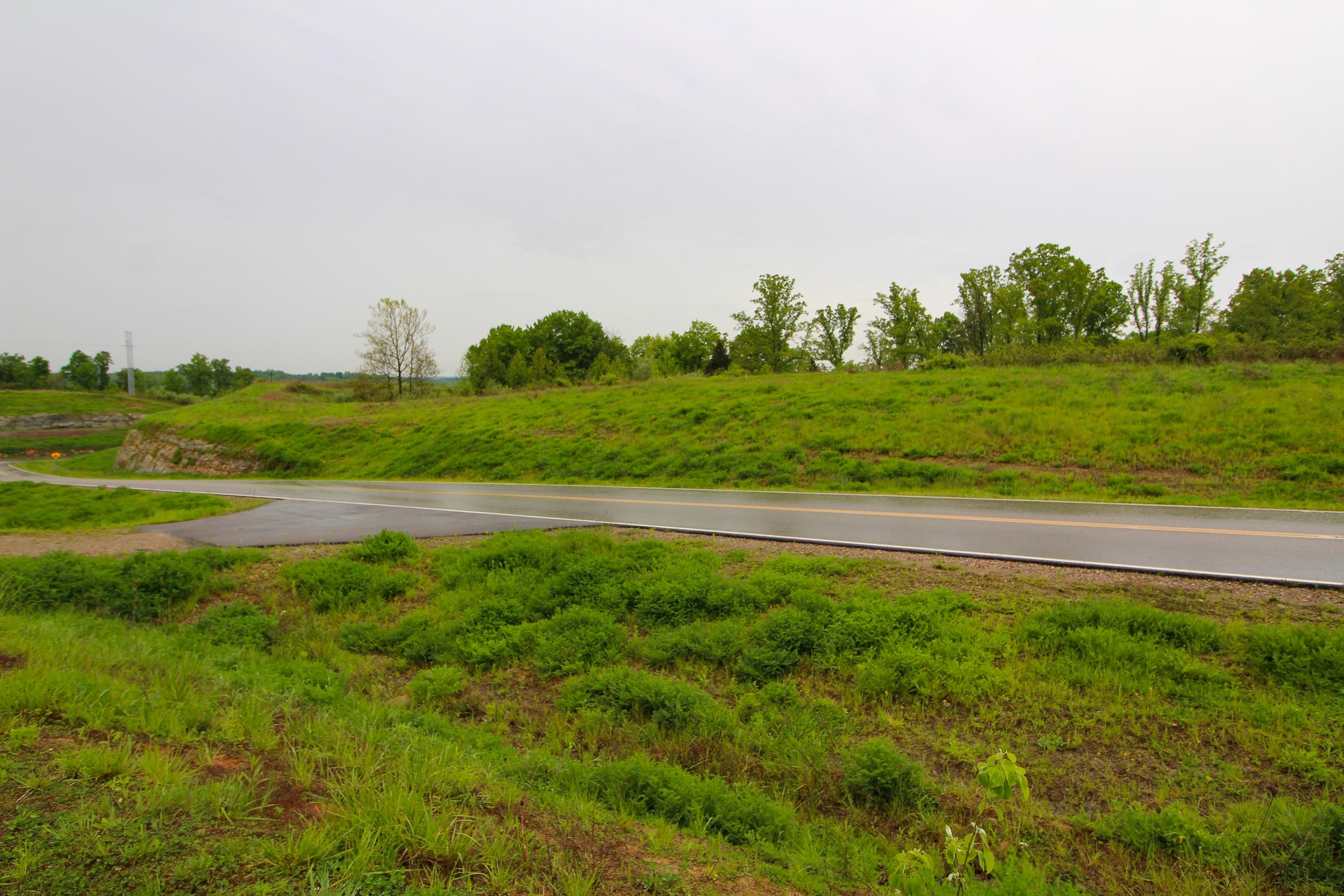 0 State Route 266, Stockport, Ohio 43787, ,Land/farm,For Sale,State Route 266,220016676