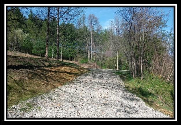 0 Mainesville Road, Junction City, Ohio 43748, ,Land/farm,For Sale,Mainesville,220018212