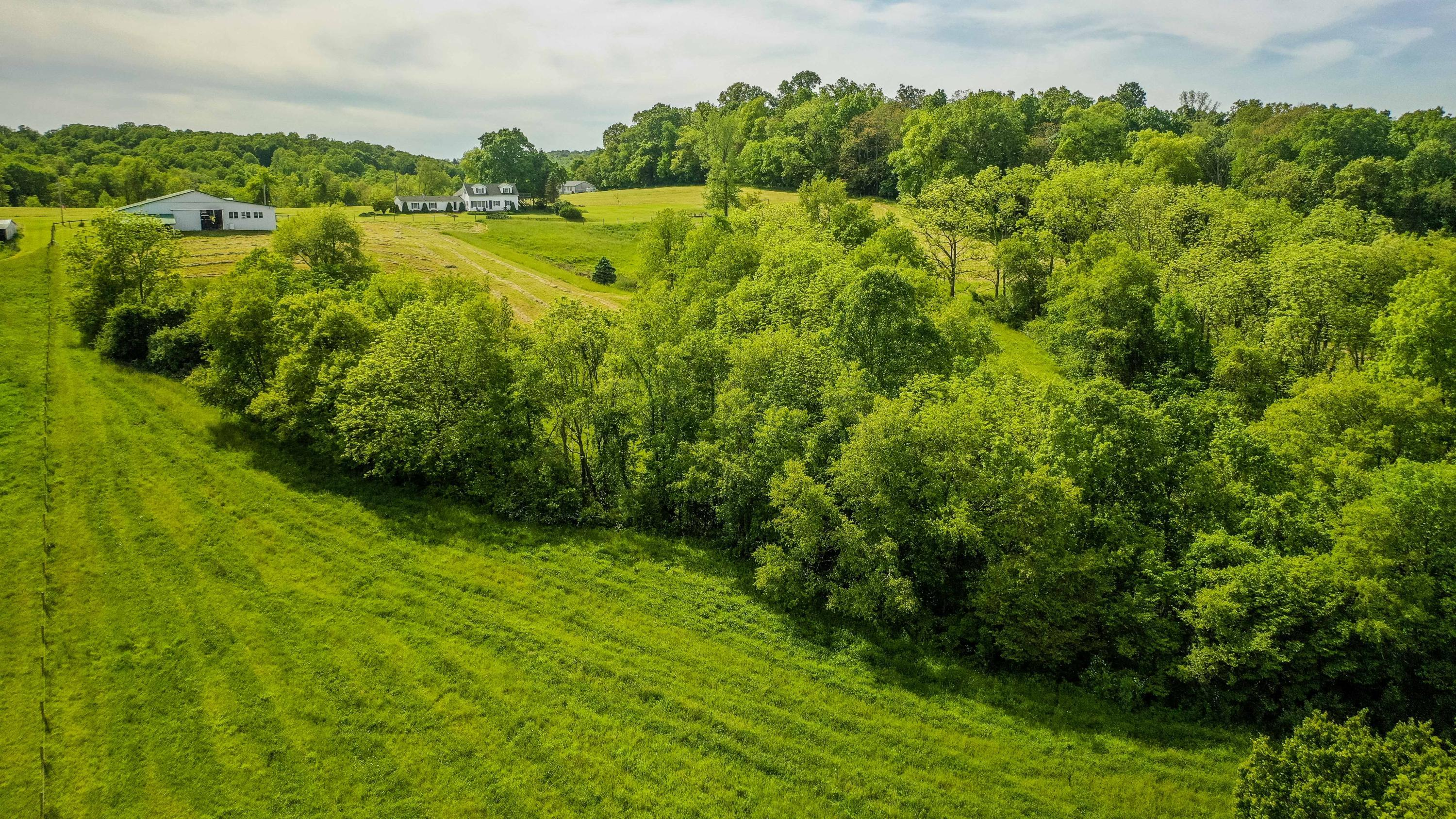 26000 Township Road 26, Coshocton, Ohio 43812, 4 Bedrooms Bedrooms, ,2 BathroomsBathrooms,Residential,For Sale,Township Road 26,220019403
