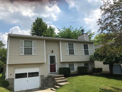 8360 WACO Lane, Powell, Ohio 43065, 3 Bedrooms Bedrooms, ,2 BathroomsBathrooms,Residential,For Sale,WACO,220020156