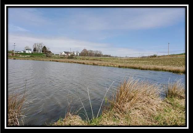 16726 National Road, Glenford, Ohio 43739, ,Land/farm,For Sale,National,220020686