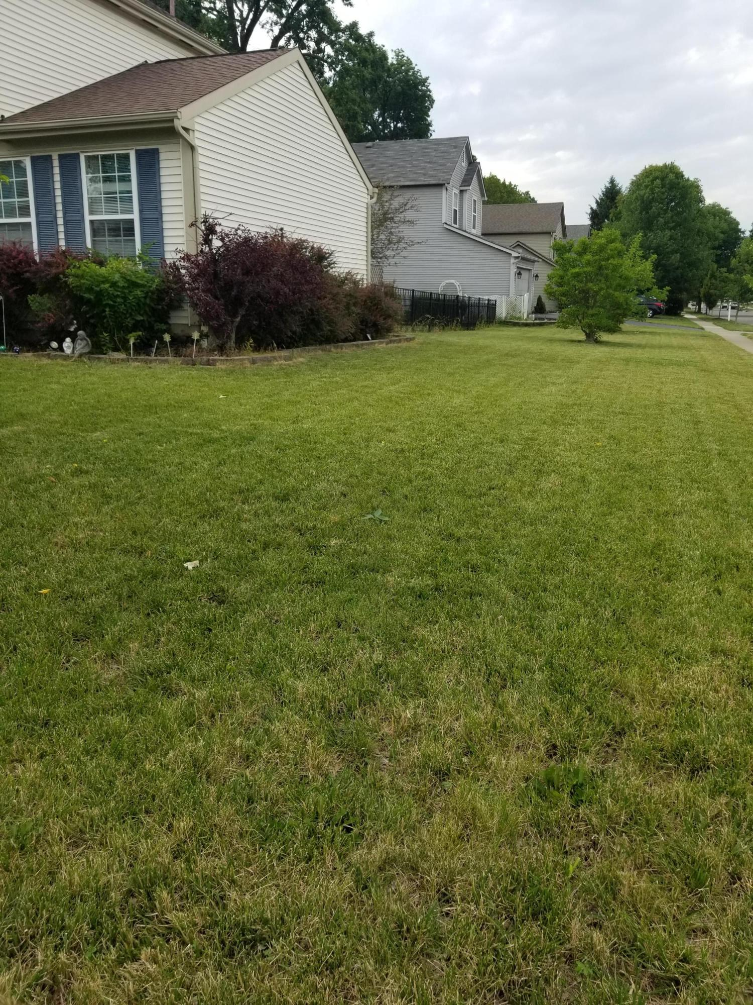 4314 Jennydawn Place, Hilliard, Ohio 43026, 3 Bedrooms Bedrooms, ,4 BathroomsBathrooms,Residential,For Sale,Jennydawn,220020746