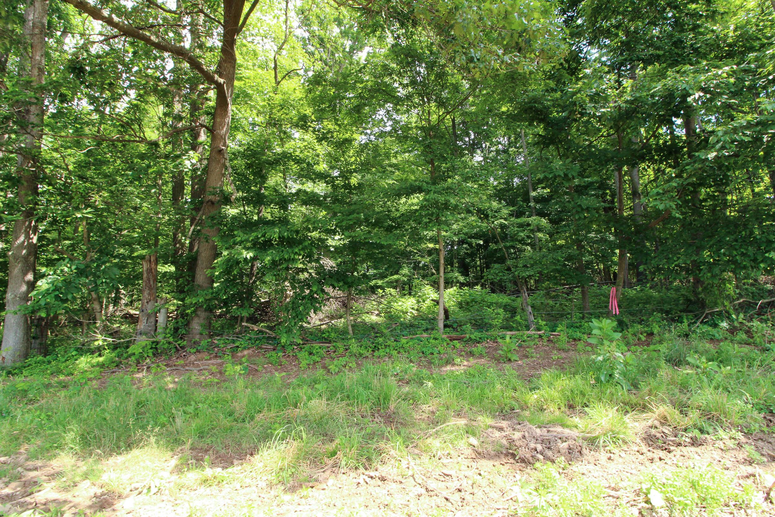 17767 Proper Road, Mount Vernon, Ohio 43050, ,Land/farm,For Sale,Proper,220020777