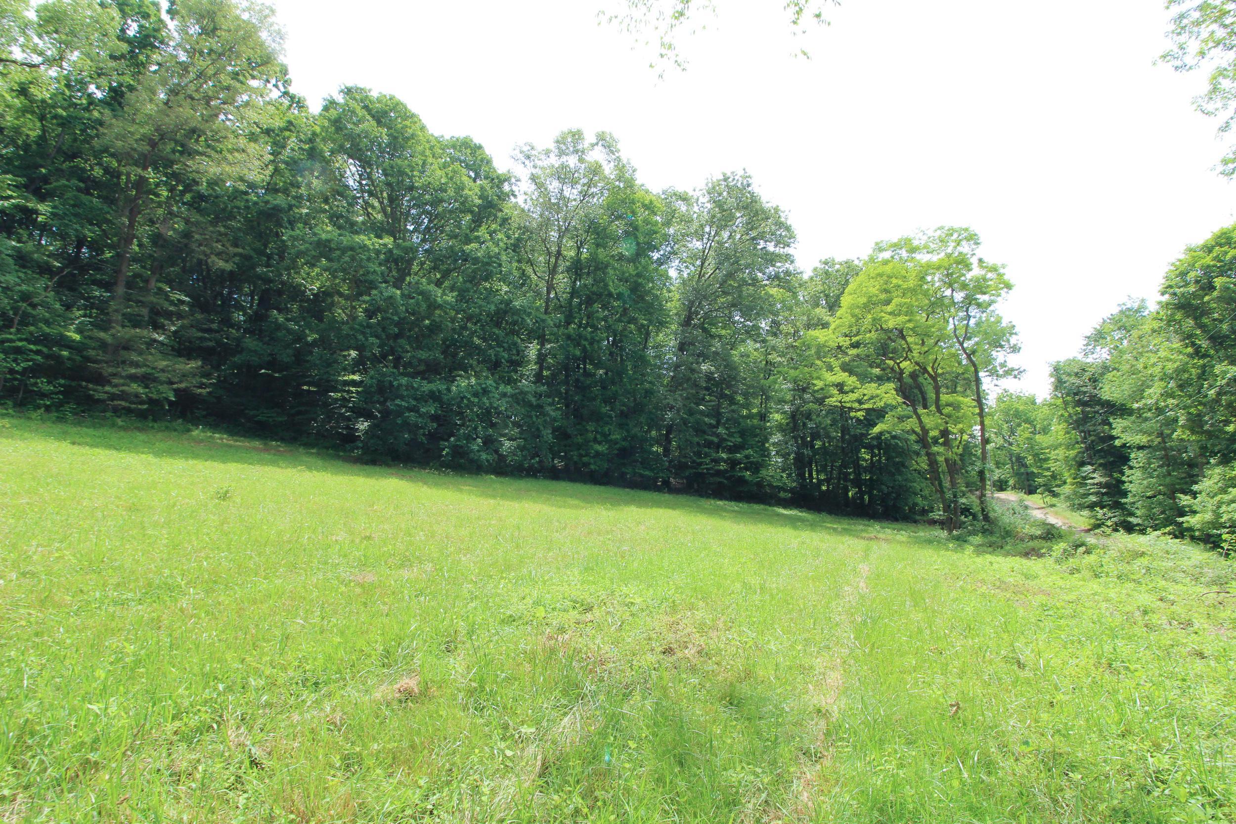 0 Proper Road, Mount Vernon, Ohio 43050, ,Land/farm,For Sale,Proper,220020782