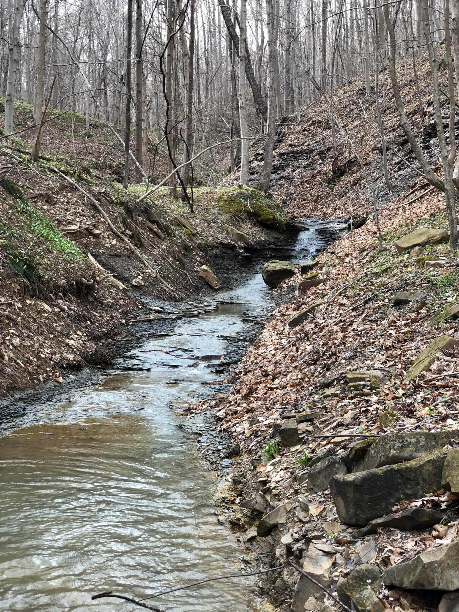 0 Scott Road, Frankfort, Ohio 45628, ,Land/farm,For Sale,Scott,220020799