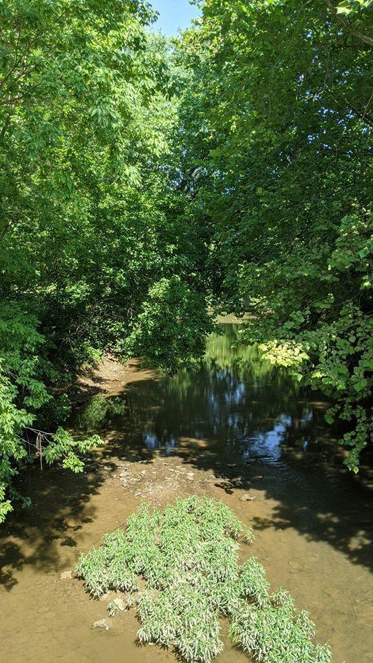 0 Co Rd 34, Mount Perry, Ohio 43760, ,Land/farm,For Sale,Co Rd 34,220022711