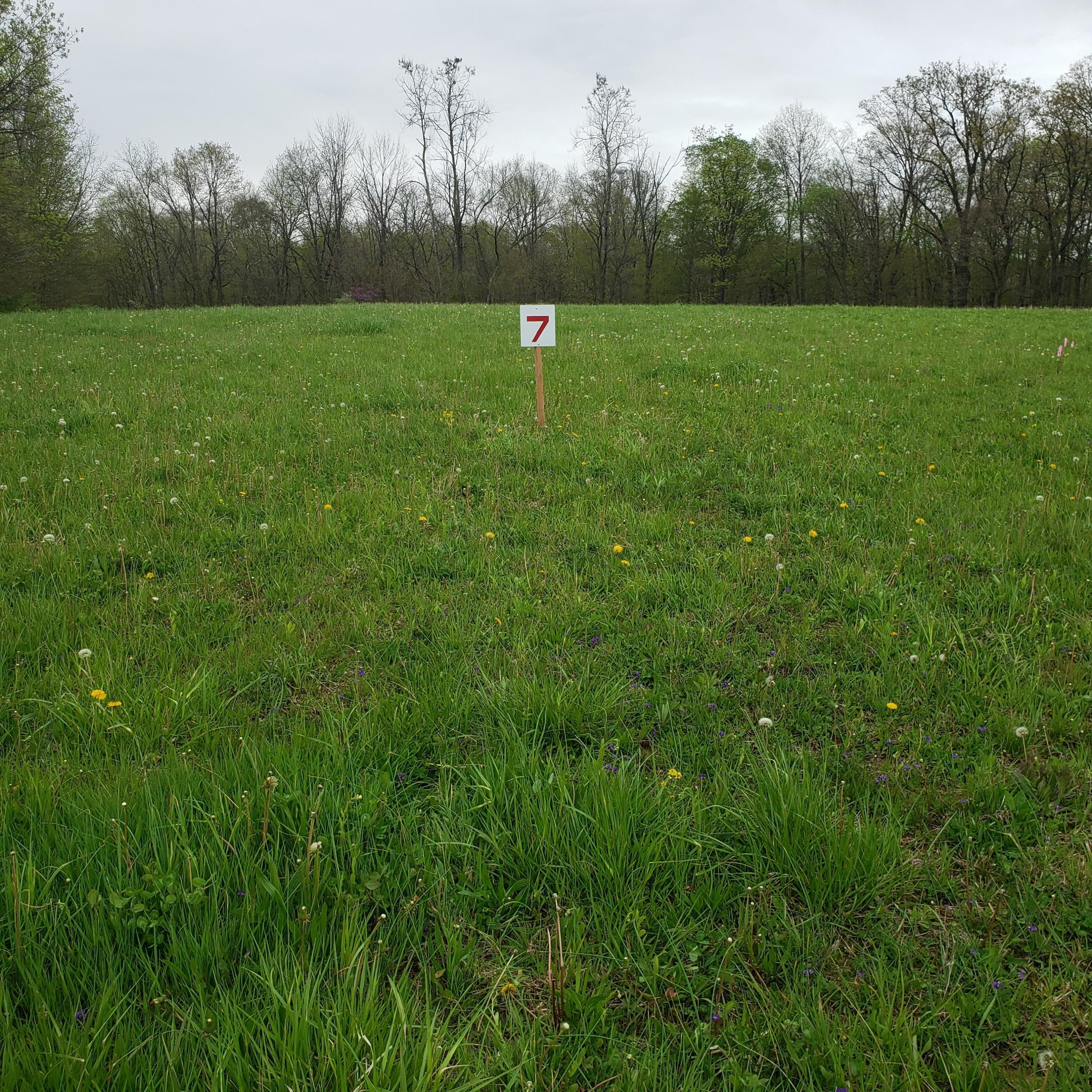0 Winchester Southern Road, Stoutsville, Ohio 43154, ,Land/farm,For Sale,Winchester Southern,220022774